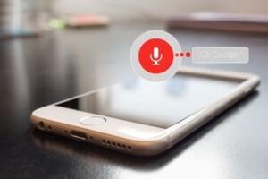 seo voice search